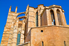 Mallorca cathedral. Beautiful Cathedral designed in the French Gothic style, Palma de Mallorca, Spain Royalty Free Stock Image