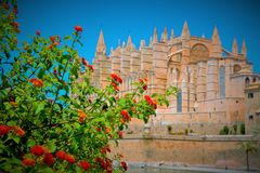 Mallorca cathedral. Beautiful Cathedral designed in the French Gothic style, Palma de Mallorca, Spain Royalty Free Stock Photos