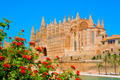 Mallorca cathedral. Beautiful Cathedral designed in the French Gothic style, Palma de Mallorca, Spain Royalty Free Stock Photography
