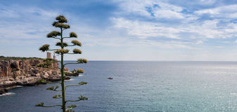 Mallorca Cliff with Lighthouse. Beautiful harbor entrance - come to cala figuera Royalty Free Stock Photos