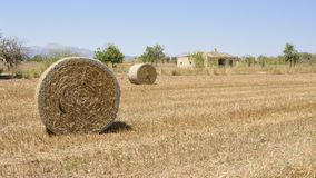 Mallorca field in summer with straw bales. And house in the background stock images