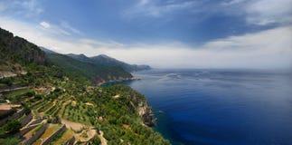 Mallorca, giacimenti del vino Fotografia Stock Libera da Diritti