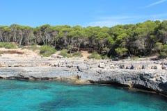 Majorca island. Beautiful coast of Majorca. Very bright blue sea. Rocky shore. On the shore there is a forest stock photo