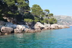 Majorca island. Beautiful coast of Majorca. Very bright blue sea. Rocky shore. On the shore there is a forest royalty free stock image