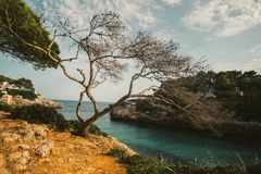 Mallorca Island is the largest of the Balearic Islands. Which belongs to Spain. You will find many sandy beaches and a pleasant Mediterranean climate that is Stock Photography