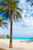 Mallorca Magaluf Magalluf beach in Calvia Mallorca. At Balearic islands of Spain Stock Photography