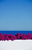Mallorca, Majorca, Balearic Islands, Spain, bougainvillea, pink, purple, wall, white, flowers. Bougainvillea on a white wall of the island of Mallorca on June 11 Stock Images