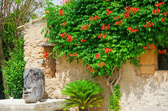Mallorca, Majorca, Balearic Islands, Spain. A glimpse of a flowery courtyard in the center of Alcudia on June 10, 2012. Alcudia is one of the main tourist Royalty Free Stock Photography