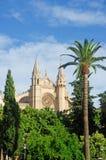 Palma, Mallorca, Majorca, Balearic Islands, Spain, La Seu, cathedral, church, Saint Mary, park, skyline, palm, tree. La Seu in Palma de Mallorca on June 11, 2012 Stock Photos