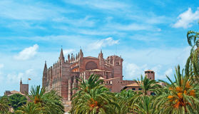 Palma, Mallorca, Majorca, Balearic Islands, Spain, La Seu, cathedral, church, Saint Mary, park, skyline, palm, tree. La Seu and Parc de la mar in Palma de Stock Photo