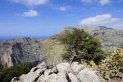 Mallorca mountains Stock Images