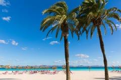 Mallorca Platja de Alcudia beach in Majorca Stock Images
