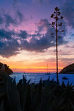 Mallorca port de Andratx sunset in Mallorca. At Balearic islands of spain Royalty Free Stock Image