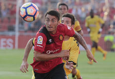 Mallorca reus soccer game. MAllorca´s player fight for the ball against Reus soccer team players during their Tournament match at iberostar stadium in the Stock Images