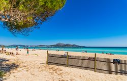 Summer holiday at beach of beautiful bay of Alcudia on Majorca, Spain Mediterranean Sea. Mallorca sand beach at beautiful bay of Alcudia, Can Picafort, Platja de Stock Images