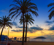 Mallorca sunrise in Magaluf Palmanova beach Royalty Free Stock Images