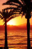 Mallorca Sunset. Sunset on Playa de Palma beach in Mallorca island Stock Image