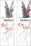 Mallow - dois preços Imagem de Stock
