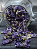 Mallow dried flowers coming out of jar. Mallow dried flowers pouring out of glass jar on dark surface Stock Photos