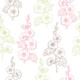 Mallow flower graphic color sketch seamless pattern illustration vector Stock Images