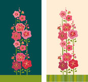 Mallow flowers. Decorative pink mallow flowers. illustration Stock Photography