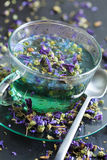 Mallow flowers. Infusion in a tea glass Stock Photography