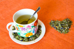 Mallow herbal tea cup. On orange background Stock Image