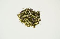 Mallow herbal tea Stock Photos