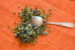 Mallow herbal tea. On orange background Royalty Free Stock Photography