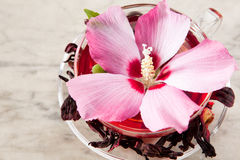 Mallow tea. With fresh and dried petals Royalty Free Stock Photos