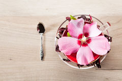 Mallow tea. With fresh and dried petals Royalty Free Stock Images