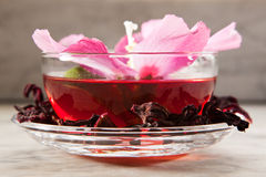 Mallow tea. With fresh and dried petals Stock Image