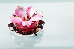 Mallow tea. With fresh and dried petals Stock Photos
