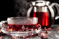 Mallow tea in glass. With dried mallow blossoms Royalty Free Stock Image
