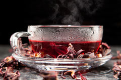 Mallow tea in glass. With dried mallow blossoms Royalty Free Stock Images