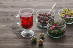 Mallow tea in glass with dried mallow blossoms Stock Images