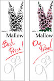 Mallow - Two Price Tags. For florist shop Stock Image