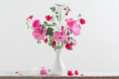 Mallow in vase on white background. The mallow in vase on white background Stock Photography