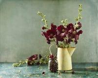 mallows вишни красные Стоковые Изображения