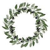 Mallrundaram från Olive Branches Royaltyfri Foto