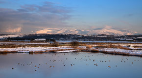Malltreath Ponds. Views around Malltreath Pools and Snowdonia National Park in winter Royalty Free Stock Photo