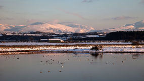 Malltreath Ponds. Views around Malltreath Pools and Snowdonia National Park in winter Royalty Free Stock Photography