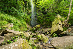 Mallyan Spout Waterfall. At Goathland in the North York Moors National Park flows into West Beck which has created a deep gorge Stock Photos