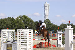 Malmo city horse show Stock Photos