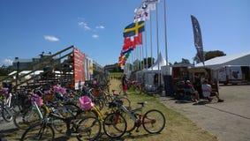 Malmo hästshow Royaltyfria Bilder