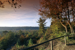 Malmontagne hill in Fontainebleau forest. Natural and regional park of French gatinais Stock Photo
