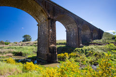 Malmsbury Viaduct. A 19th century viaduct in Malmsbury, Victoria, Australia on a clear spring day Royalty Free Stock Photo