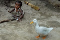 Malnourished Children in India. September 05, 2011.Bolepur,Birbhum,West Bengal,India,Asia-A malnourished child with a duck in the remote village of West Bengal Stock Photography