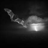 Malo y tormenta Foto de archivo