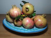 Malograno 6. Pomegranate dish freshly harvested Royalty Free Stock Photo